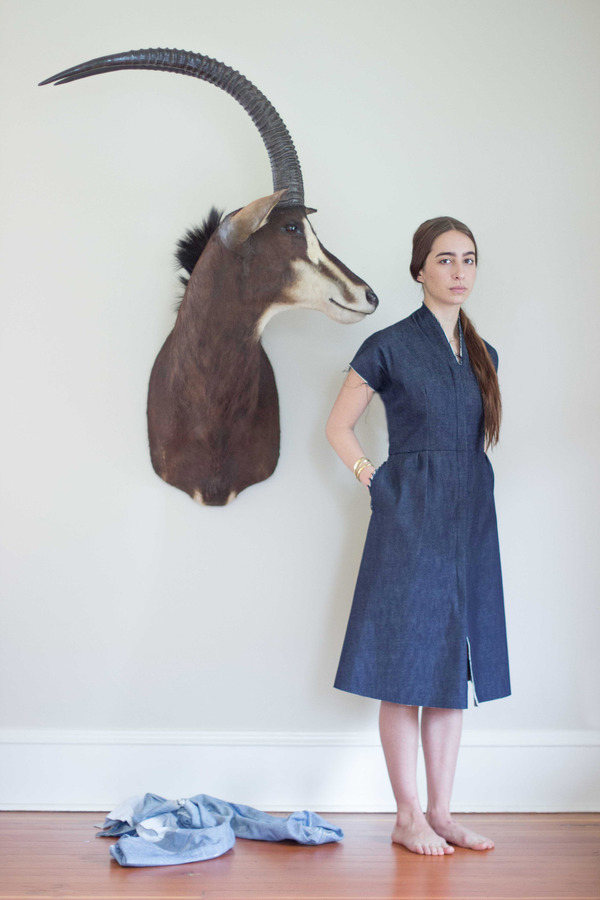 Alexa Stark Denim Shift Dress