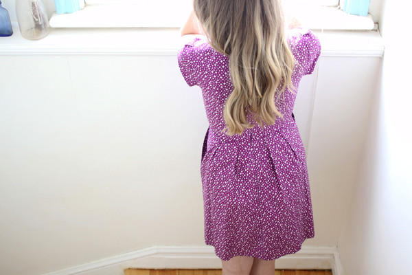 Birds of North America Gander Dress (Purple Starlight)