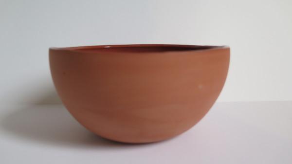 Terracotta grow pots w/ cactus