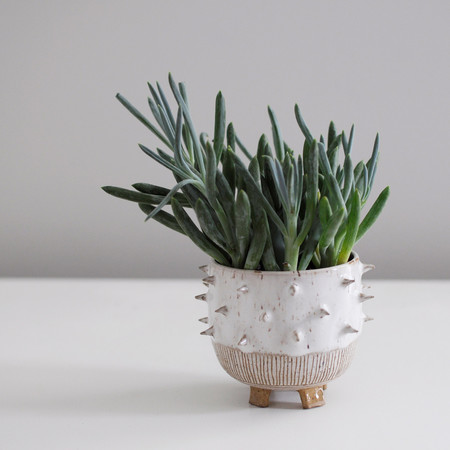 Little Bear Pots Spike Planter