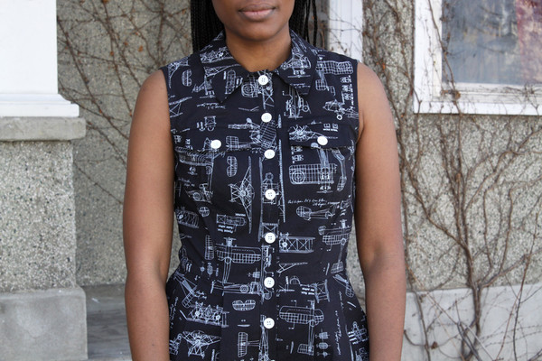 Birds of North America Lovebird Dress (Black Planes)