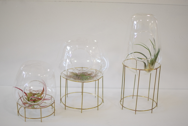 Roost Tabletop Terrarium Set