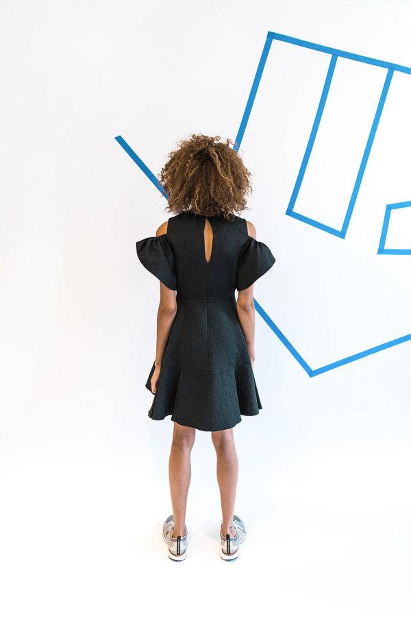 Allina Liu Iris Dress