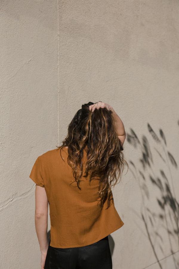 ali golden v-neck top in rust