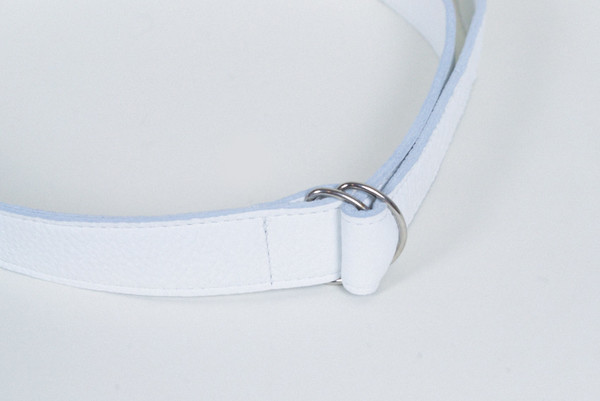 Clyde D Ring Belt in White