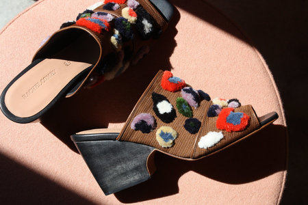 Rachel Comey Embroidered Dahl Mule