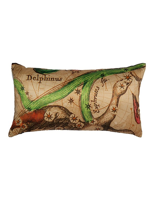 Artisen Delphinus Astrology Pillow