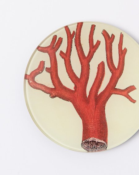 John Derian Red Coral