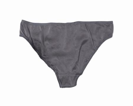 WHIZ Organic Silk Bikini Brief - Slate