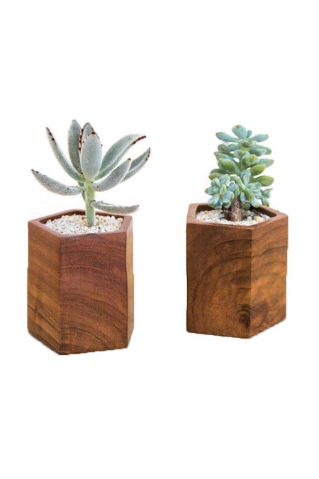 Rose & Fitzgerald Mugavu Geometric Planter
