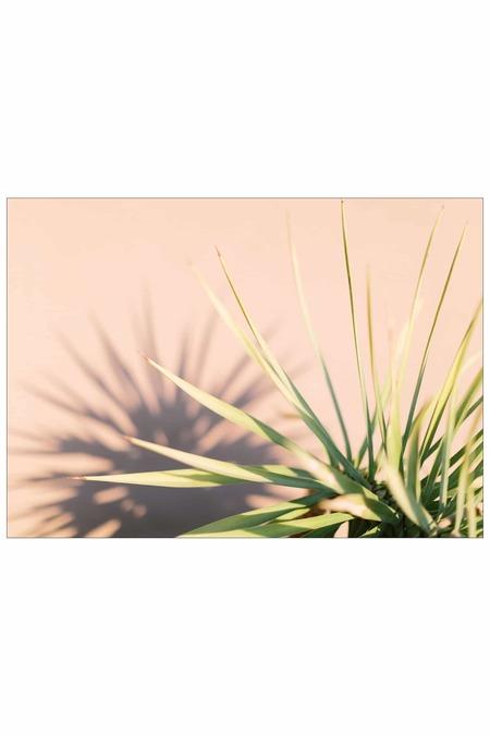 LOFT CREATIVE palm print no. 29