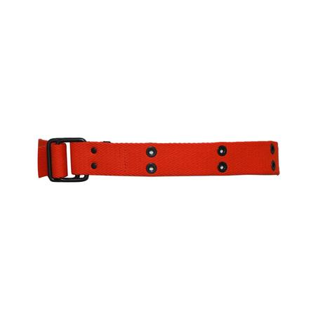 Kolor Beacon Ring Belt