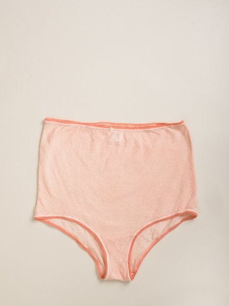 Vivien Ramsay Hi Waist Silk Mesh Panty - Pink
