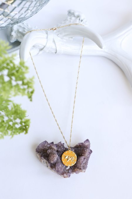 CAM Jewelry Carina Star Mate Zodiac Necklace