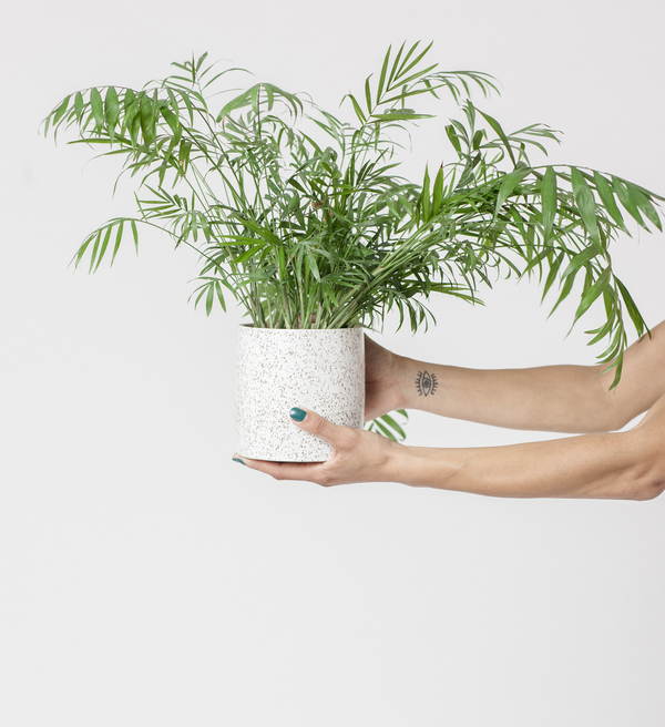 EXCLUSIVE: Lindsey Hampton Satin Speckled Planter