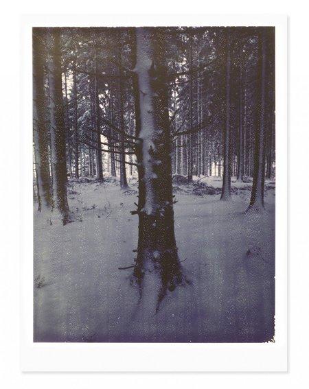 Adam Custins Germany in Snow Art Print