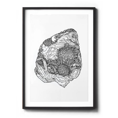 Sophia Mary Mac Waratah Art Print