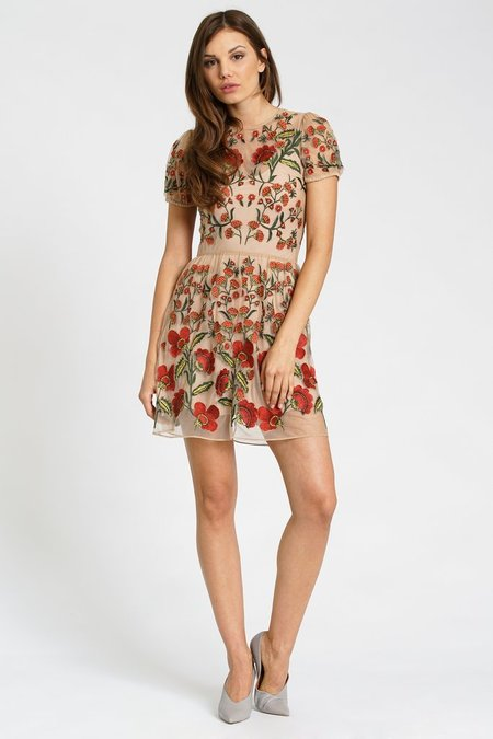 dRA Clothing Andria Dress - embroidered floral