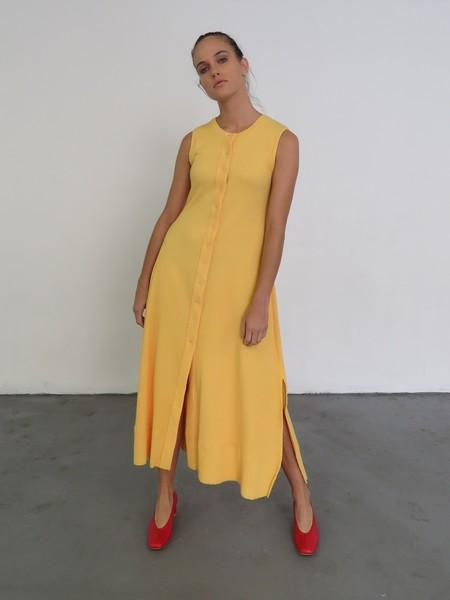 Delfina Balda Basic Color Dress - Yellow