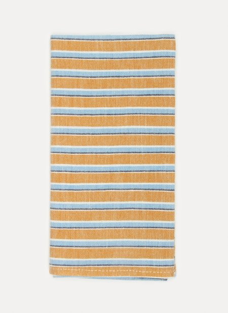 Heather Taylor Home Goldenrod Napkin Set - Terra
