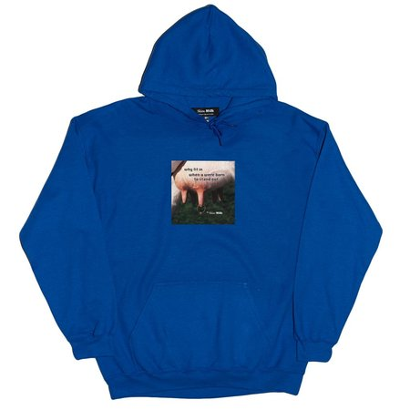 Unisex Skim Milk Why Fit In When You Were Born To Stand Out Hoodie - Blue