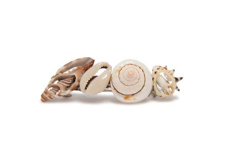 SVNR MATIRA barrette - Seashells