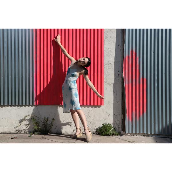 Erica Tanov greta indigo slip