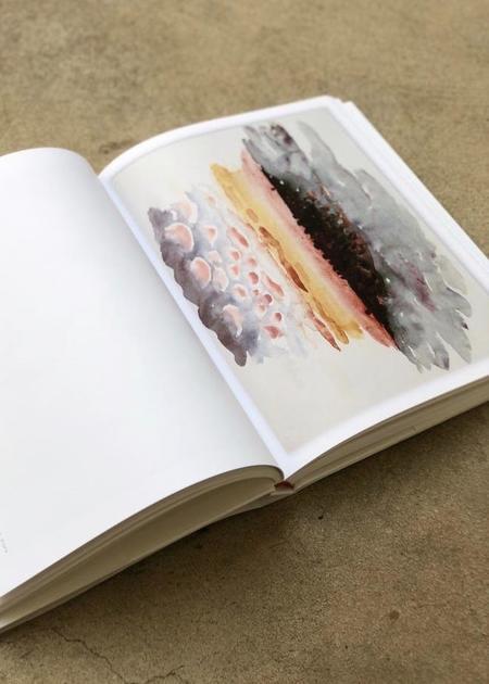 Radius Books Georgia O'Keeffe Watercolors: 1916-1918 Books