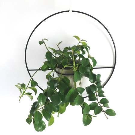 KORD Orbis hanging planter