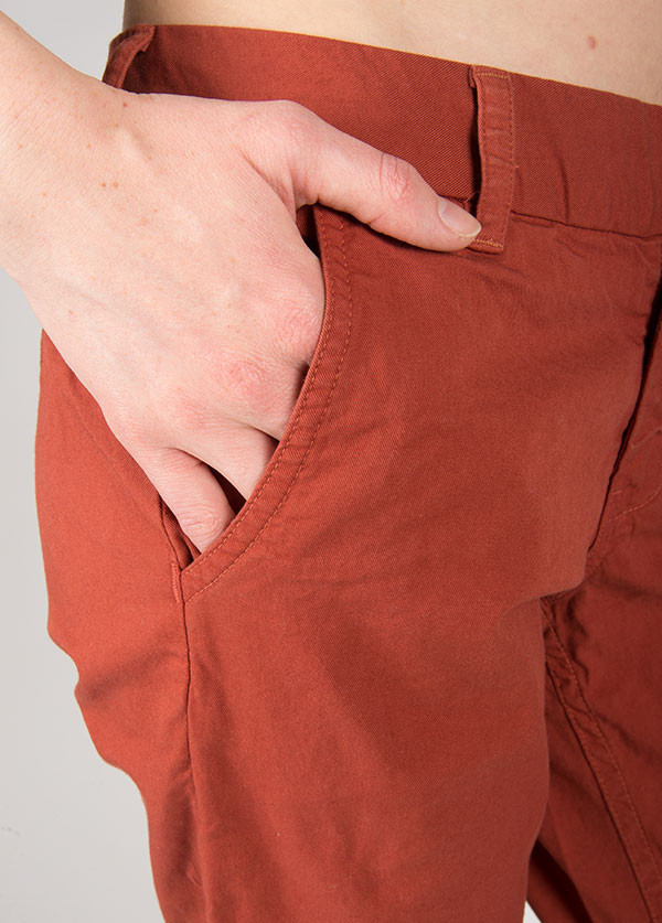 The West is Dead - Chino Pant in Rust Beetle