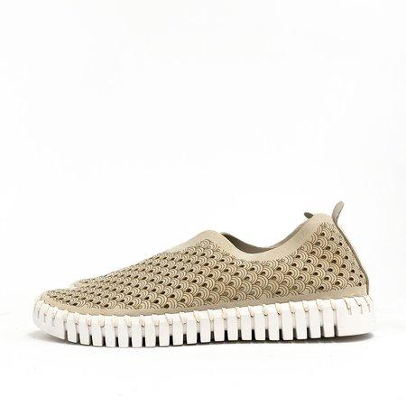 Ilse Jacobsen Sneaker - Tulip