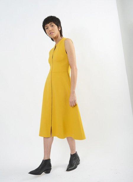 Meg Recess Dress - Mustard