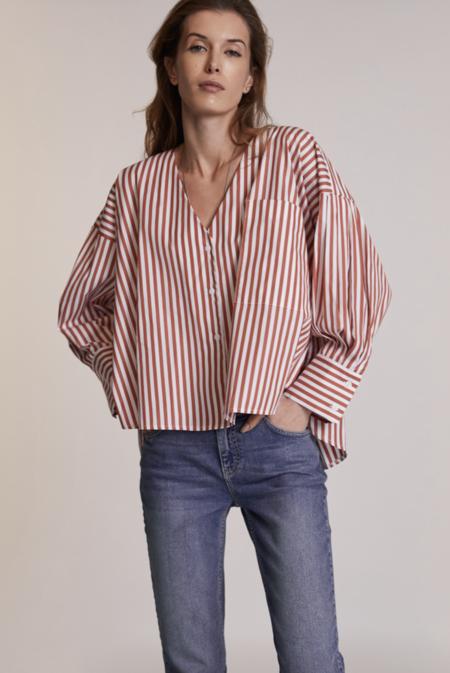 LADYBIRD Harshman Tosca Shirt - Brown Stripes