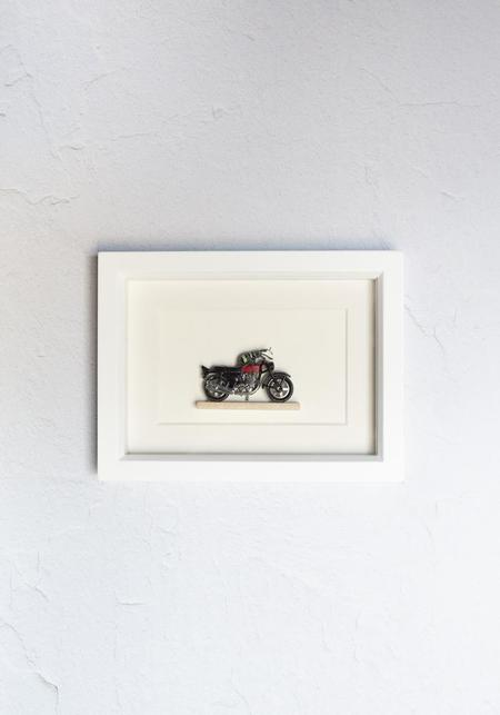Bug Under Glass Framed Weevil Knievel