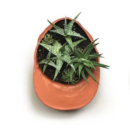 Wyatt Little Hat Planter - Terracotta