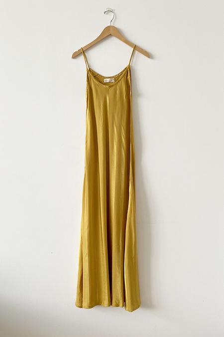 Natalie Martin Silk Maxi Dress - Heather Tumeric