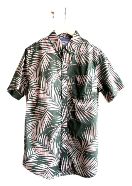 Modern Liberation Palm Tree Leaf Shirt - Aqua
