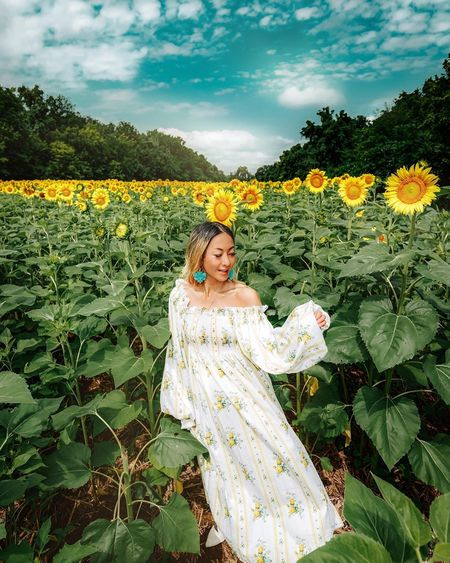 NIKA TANG Lauren Dress - Yellow Rose