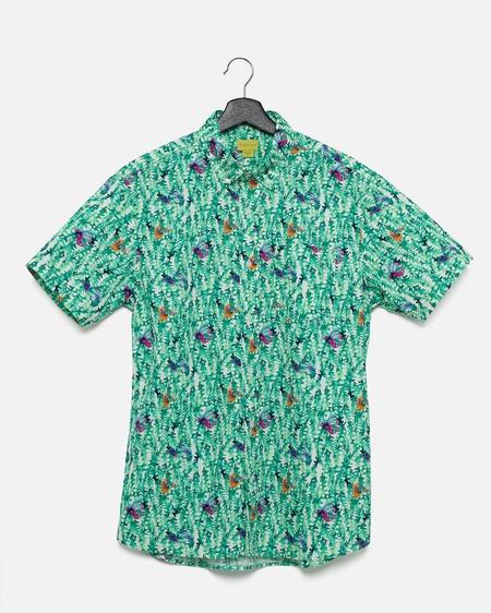 Poplin & Co. Casual Button Down Short Sleeve Shirt - School Of Fish
