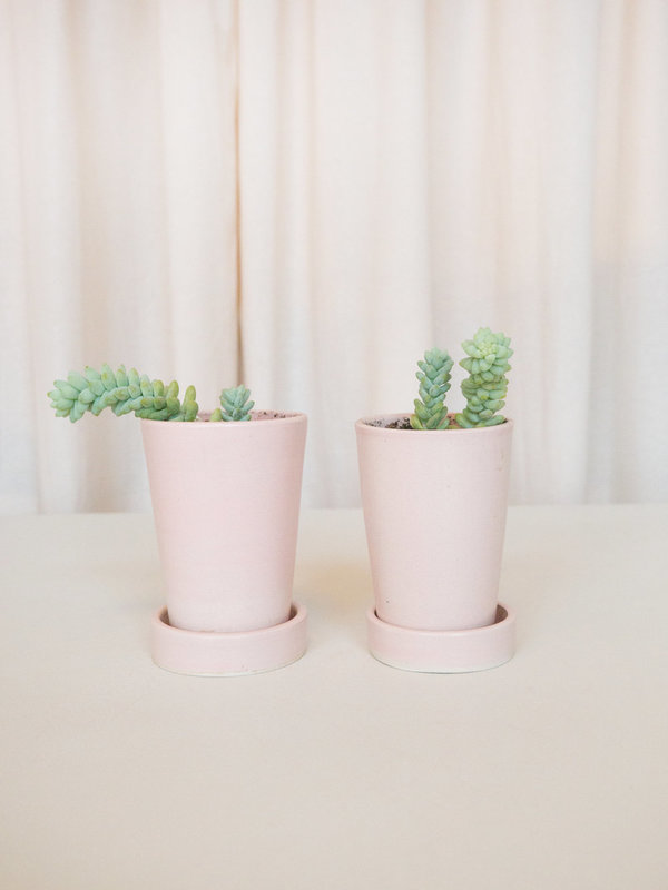 Notary Ceramics Little Pink Planters