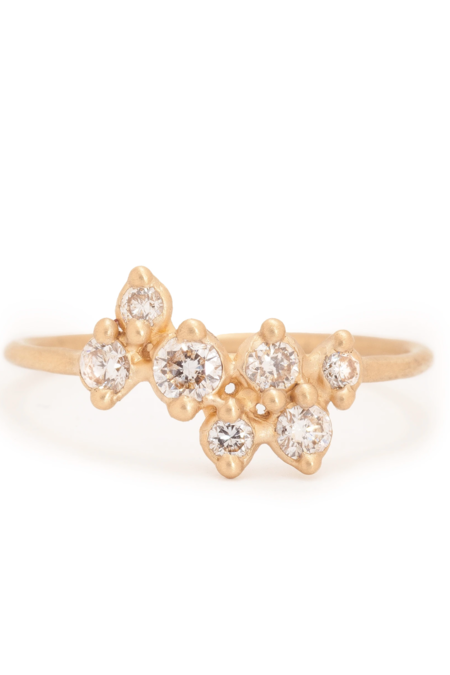 Valley Rose Andromeda Ring - Ground Diamonds