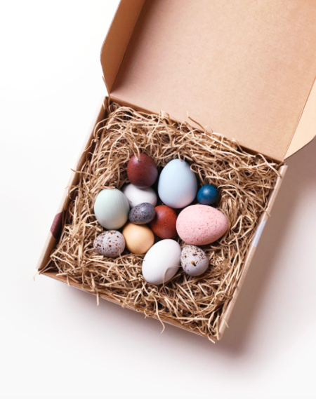 Kids MOON PICNIC A Dozen Bird Eggs in a Box