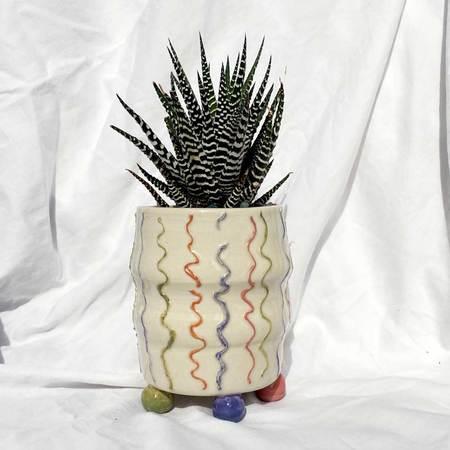 Lolo Pastel Squiggles & Zebra Succulent