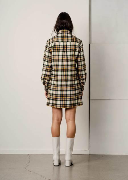 Penny Sage Sissi Shirt Dress - Plaid Flannel