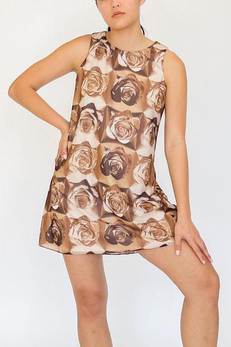 Vintage Graphic Print Mesh Dress - Rose