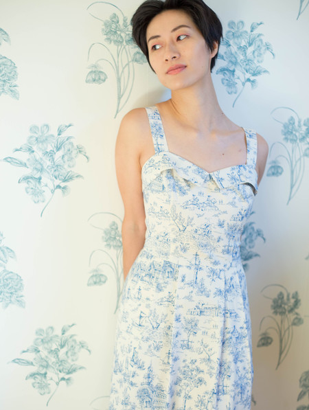 Birds of North America Eider Dress (Cornflower Toile)