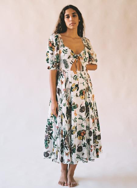 Aniela Parys Fauna dress - Apricus