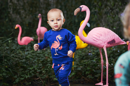 KIDS Tao&Friends Marine Flamingo Sweatshirt