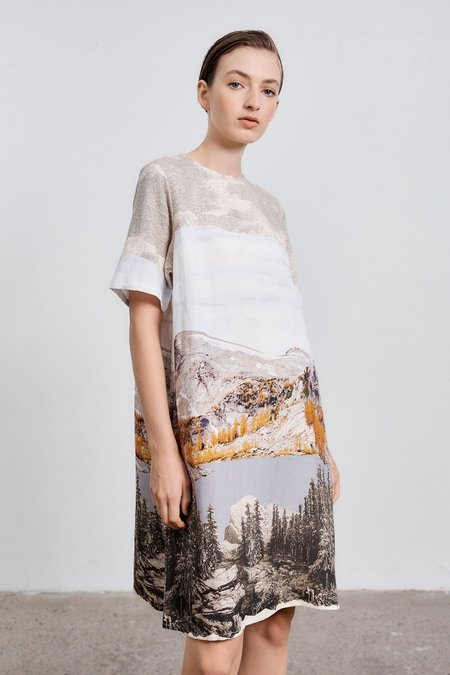 Milk & Thistle Climber Shift Dress - Washington Print