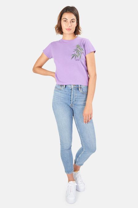 Blue&Cream Leaf T-Shirt - Purple